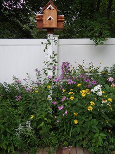by Gina Marino, Certified Wildlife Garden, purple coneflower, coreopsis, roses, st. john's wort, phlox, sunflower, clematis, foxglove,aster, peonies,hydrangea, butterfly weed, butterfly bush, black eyed susan