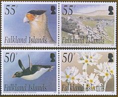 Saunders Island