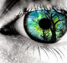 Augen sind das Fenster zur Seele