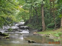 Wears Valley Cabin Rental: Historic Cabin On Private Cascading Waterfalls. Unbelievable Location. Pets Ok | HomeAway