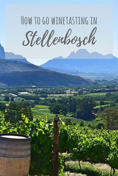 Country South Africa: Stellenbosch Wine Tasting Guide Looking at what to do in South Africa? Be sure to go winetasting in Stellenbosch!Looking at what to do in South Africa? Be sure to go winetasting in Stellenbosch! Barbados, Cape Town, South African Wine, Wine Safari, Africa Travel, Wine Country, Wine Tasting, Travel Guides, Travel Tips