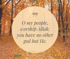 Worship Allah!