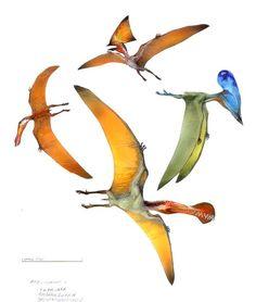 pterosaur species | pterosaurs