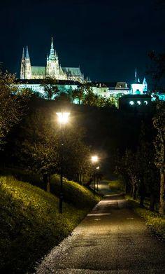 St.Vutus cathedral and at night from Seminary Garden, Prague, Czechia #night #city #prague #Czechia