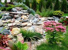Landscape design rock garden; site has helpful ideas to consider when designing