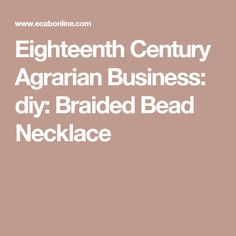 Eighteenth Century Agrarian Business: diy: Braided Bead Necklace