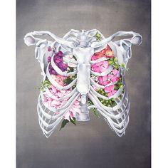 Floral Anatomy: Rib Cage at shanalogic.com