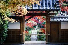 Ryoan-ji – Kyoto – JP – 2013