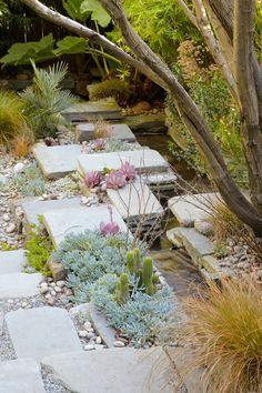 stone + succulent garden