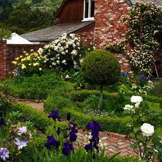 Beautiful established gardens surround the house ! Garden Oasis, Country Life, Homesteading, New Zealand, Stepping Stones, Paths, Brick, Roses, Gardens
