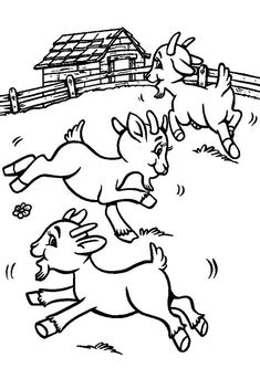 Camping Coloring Pages, Farm Coloring Pages, Coloring Pages For Kids, Free Coloring, Coloring Books, Goat Art, Cute Goats, Printable Coloring Sheets, Baby Goats