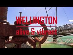 "Wellington — Alive and Vibrant, by Stephen Patience. ""Best watched in 1080p HD, this 4 minute time lapse video proves that Wellington is certainly alive and vibrant."""