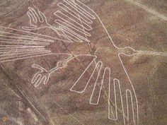 """Кондор на плато Наска – #Перу #Ика (#PE_ICA) Геоглиф """"Кондор""""  #достопримечательности #путешествия #туризм http://ru.esosedi.org/PE/ICA/1000047696/kondor_na_plato_naska/"""