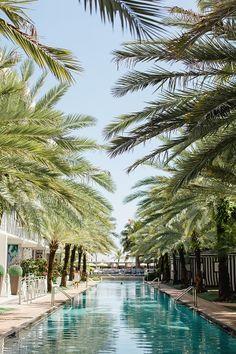 http://www.soflosocial.com/ #soflosocial #soflo #florida #beach #beaches #floridabeach #palm #palmtree #southfloridabeach #soflobeaches #placestogo #vacation #travel #amazing