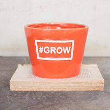 orange garden pot — MUSEUM OUTLETS  #ceramicpot   #gardening