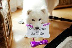Here comes the Bride :)