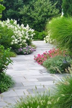 Traditional Landscape/Yard with Pathway, Robinson Flagstone - Blue/Gray Natural Cleft PA Flagstone, Honeysuckle Tree