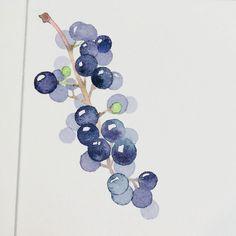 물놀이... 이만한 시원한 물놀이가 있을까?! . . . #수채화#수채화그리기#수채화일러스트#식물그리기#식물그림#수채화그림 #베리#berry#watercolor #watercolorpainting #watercolour #aquarelle…