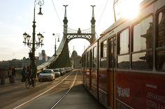 Sunset on Liberty Bridge - Tram - Szabadság híd - Tram - Budapest - Hungary…