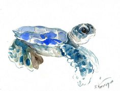 Baby Sea Turtle Painting 12 X 9 in original by ORIGINALONLY