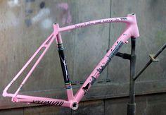 Bike custom painting art