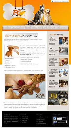 Diseño web de Pet Central