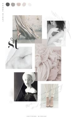 Photographer color inspiration mood board - Design by Saffron Avenue