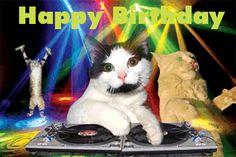 """Résultat de recherche d'images pour """"chat happy birthday gif"""""""