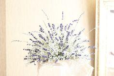 Delikatne kwiatuszki białej gipsówki coraz częściej pojawiają się na naszych weselach, dziś prezentujemy kilka pomysłów na gipsówkowe stylizacje wesela.