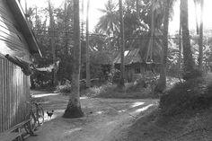 KAMPONG HOUSES AT PULAU UBIN 1970
