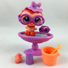 Littlest Pet Shop Orange Owl #1147 w/Matching Teensie Both w/Glasses Accessories #Hasbro