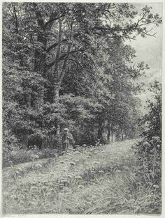 Landscape Sketch, Landscape Drawings, Landscape Paintings, Pencil Drawings Of Nature, Nature Drawing, Into The Woods, Scenery Paintings, Tree Sketches, Ecole Art
