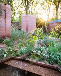 garden planning ideas are more powerful than guns Urban Garden Design, Flower Garden Design, Chelsea Flower Show 2018, Synthetic Lawn, Australian Native Garden, Chelsea Garden, Meadow Garden, Rain Garden, Olive Garden