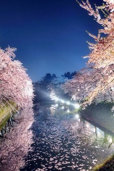 Spring night by Sho Shibata. Japan