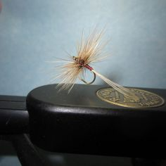 Another variant dry fly pattern