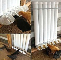 22 Low-Budget DIY Backyard Chicken Coop Plans Keeping chicken in the backyard is really fun, as you will always have fresh eggs and cute pets at home. So if you have a little free space, you could consider building a chicken coop, even though you are only Backyard Chicken Coop Plans, Building A Chicken Coop, Chickens Backyard, Backyard Ideas, Backyard Playground, Chicken Coop Pallets, Garden Ideas, Chicken Coop Plans Free, Chicken Tractors