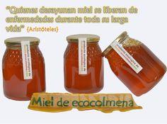 12 Beneficios de la miel natural, que no tiene la industrial