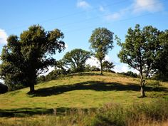 Klakkebjerg i solskin #beautiful #outdoor #nature #landscape #bestofscandinavia #worldunion #wu_europe #igers #igdaily #igscandinavia #danmark #nofilter #vsco #vscocam #picoftheday #photooftheday #instagood #instamood #instadaily #assens #assensnatur #visitassens #visitdenmark #instapic #instagram #friluftsliv #sun #sunshine