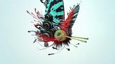 MSN - Butterflies - 01 - (English) on Vimeo