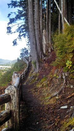 Rainbird Trail in Ketchican, AK