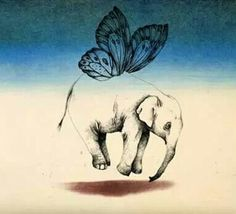 butterfly, elephant, and fly afbeelding