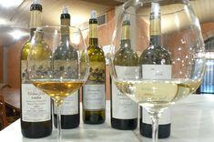 Το μεγάλο λευκό σταφύλι του Μπορντό βρίσκει στον αμπελώνα της Δράμας έναν εξαιρετικό όσο και παραγνωρισμένο εκπρόσωπο. White Wine, Alcoholic Drinks, Glass, Alcoholic Beverages, Drinkware, White Wines, Liquor, Yuri