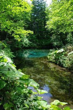 神の子池/Child pond of god.   神の子池,北海道,日本,hokkaido,pond,blue,green,mysterious,japan