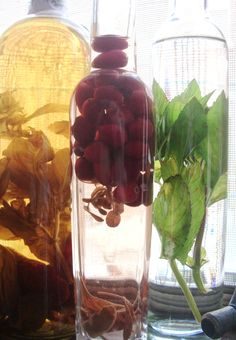 DIY Herbal Wines