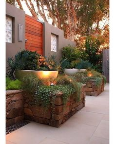 55 Backyard Landscaping Ideas You'll Fall in Love With Raised stone planters, up lighting. Nice colors in plants. For up against house? Find your dream for your garden at /product-category/patio-and-landscaping/stone-garden-planters/ Succulent Landscaping, Front Yard Landscaping, Landscaping Ideas, Stone Landscaping, Inexpensive Landscaping, Mid Century Landscaping, Florida Landscaping, Farmhouse Landscaping, Modern Landscaping
