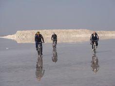 انعکاس تصویر در سطح کم عمق دریاچه Mountain Bike Tour, Mountain Biking, Iran, Camel, Cycling, Tours, In This Moment, Animals, Biking