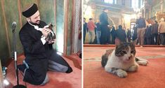 CAT INTERRUPTS AN IMAM IN A MOSQUE AND HIS REACTION IS HEARTWARMING