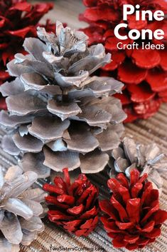 Pine cone flower wreath diy christmas tree zinnia yarn cones my honeys plac Silver Christmas Decorations, Diy Christmas Gifts, Christmas Tress, Christmas 2014, Holiday Crafts, Merry Christmas, Holiday Decor, Metallic Spray Paint, White Spray Paint