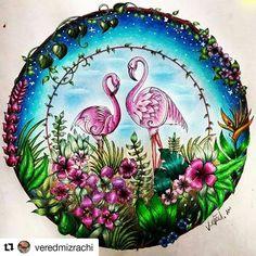 Take a peek at this great artwork on Johanna Basford's Colouring Gallery! Secret Garden Coloring Book, Coloring Book Art, Adult Coloring, Coloring Tips, Johanna Basford Books, Johanna Basford Coloring Book, Flowery Wallpaper, Love Wallpaper, Faber Castell
