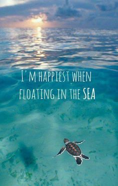I am happiest when floating in the sea